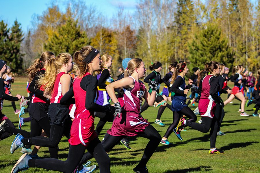 Cross Country Concludes with Home Sectional Meet