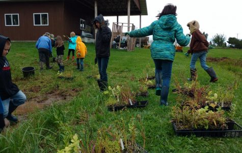 Rain Garden, Bird and Butterfly Habitat Work Day
