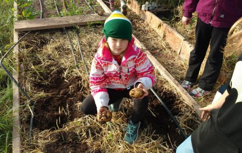 Outdoor Learning Work Day