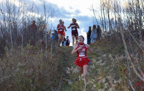 Cross Country Takes Unofficial County Championship